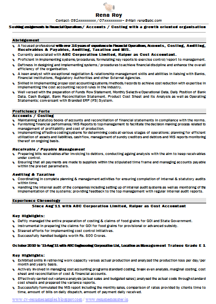 sample template of an experience professional resume sample with