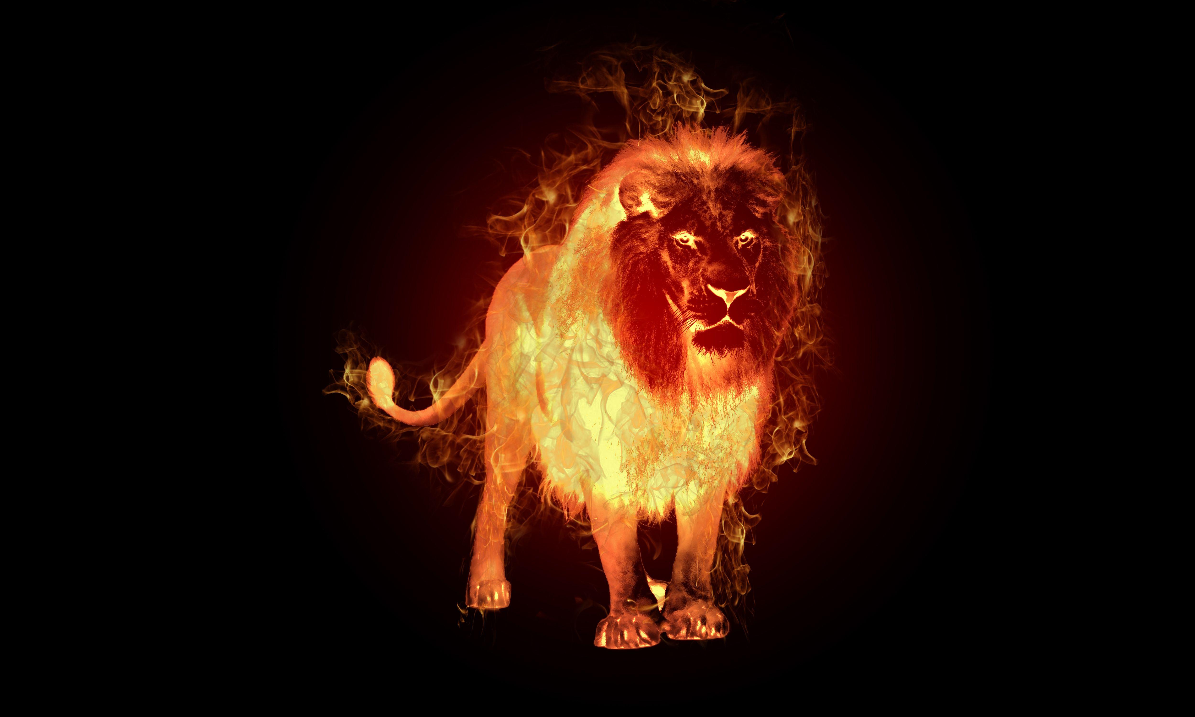 By Revannel93 Source Deviantart Fire Lion Lion Wallpaper Fire Art