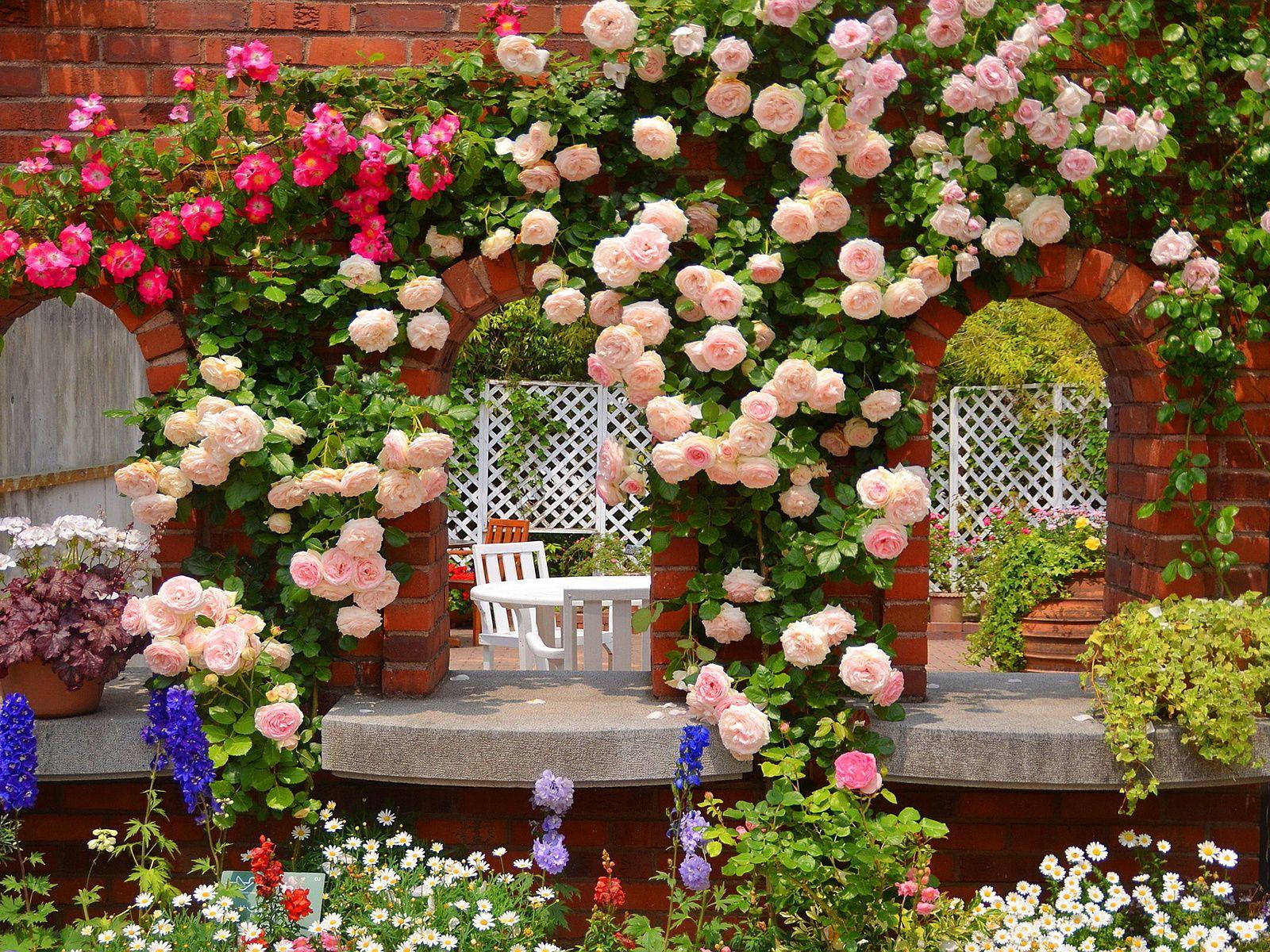Galeria De Imagenes Y Fotos Bonitas Fotos De Interiores De Modernas Terrazas Garden Pictures Growing Roses Planting Flowers