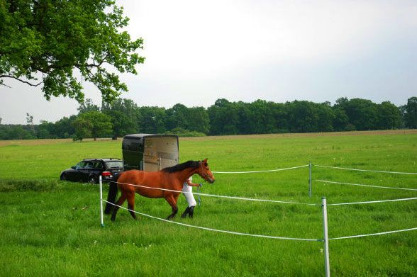Portable Fence Horse Trail Riders See Roflexs A Mobile Portable Electric Horse Travel Corral Fencing Easy To Use Fence Horse Camp Horses Horse Trail