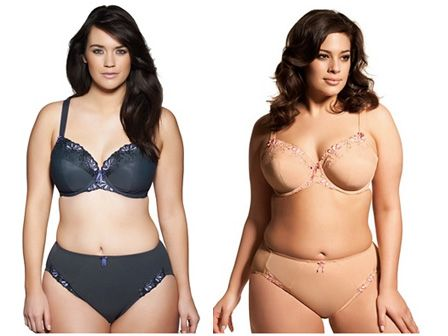 plus size underwear for women - Google Search | Underwear ...