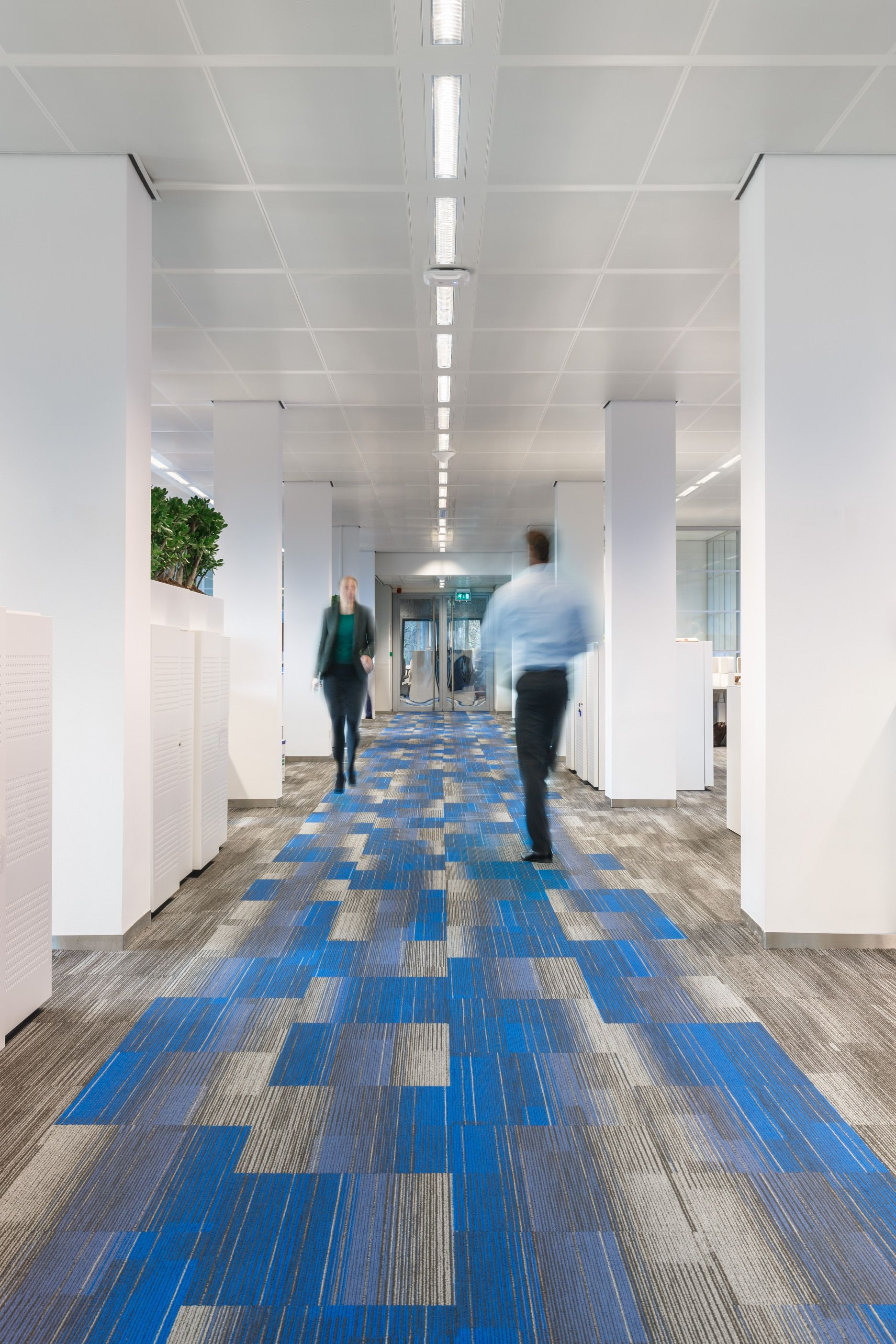 Color At Work Collection By Shaw Contract Interior