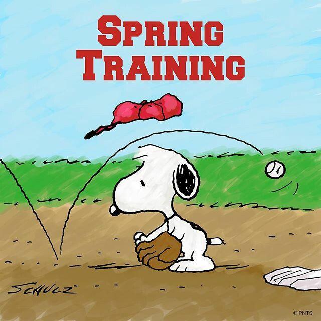 Bildergebnis für comic peanuts baseball training