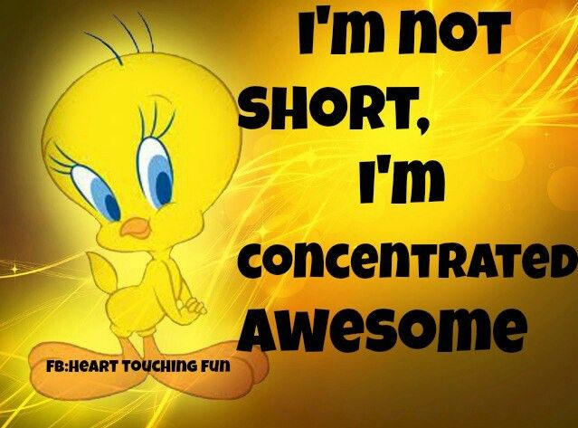 I'm not short, I'm concentrated Awesome! Bird quotes