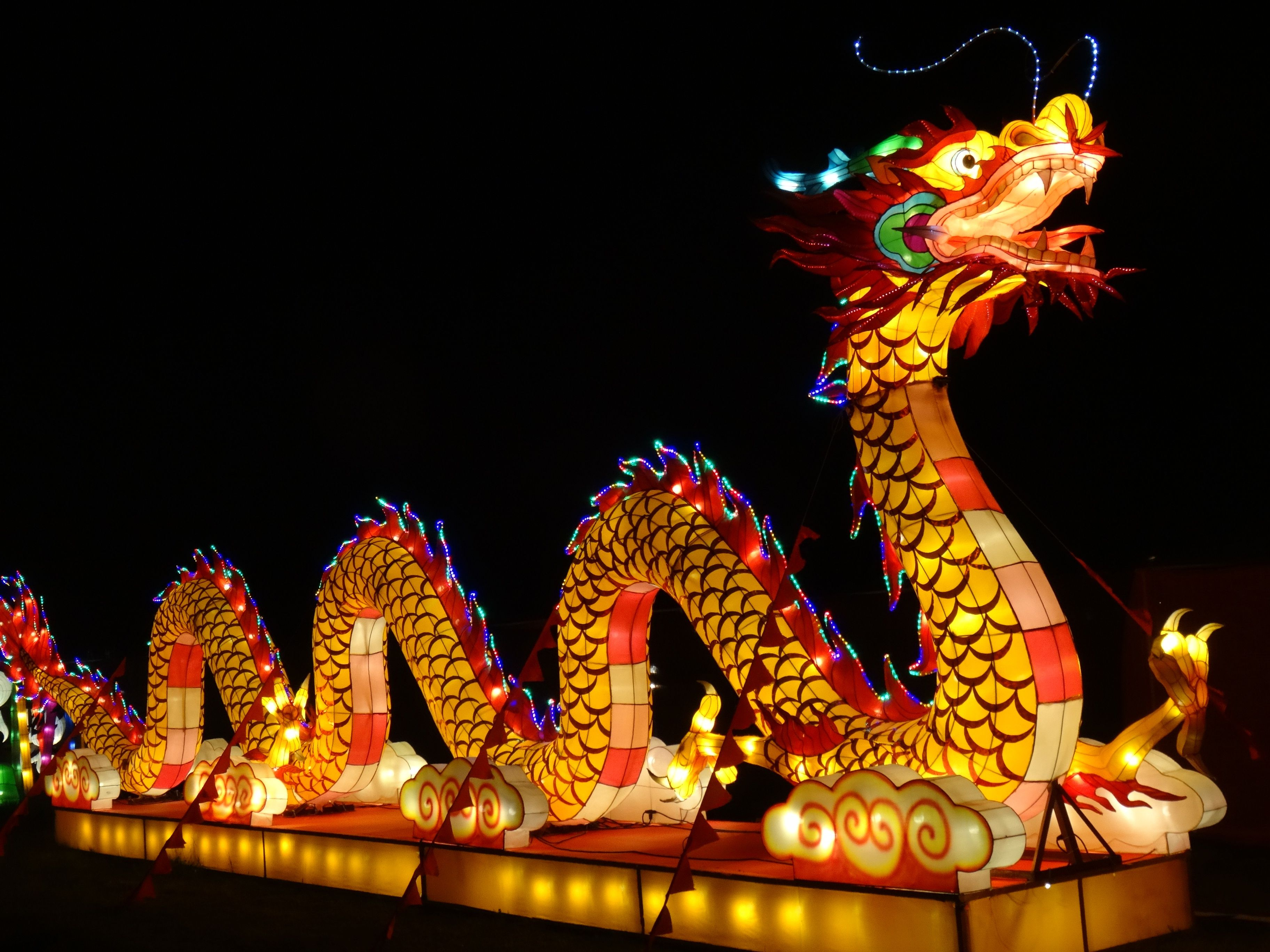 Holiday Chinese New Year Chinese Dragon Holiday Light