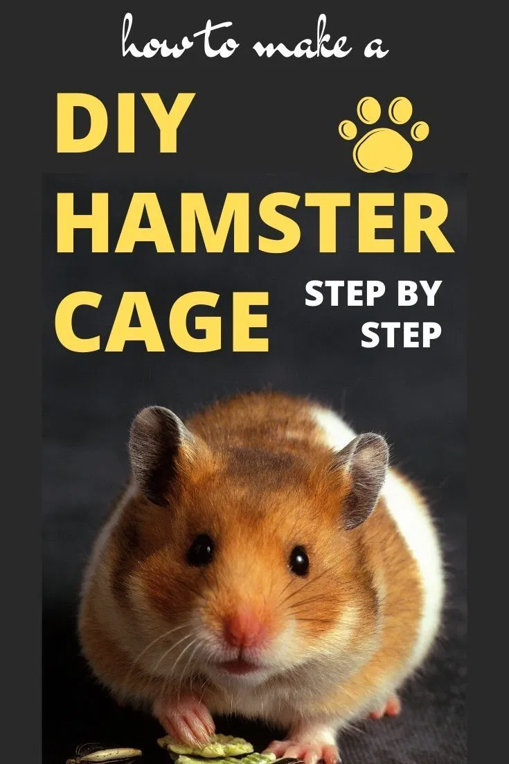 How To Add Another Level To A Cage Hamster Central Hamster Diy Cage Hamster Diy Hamster