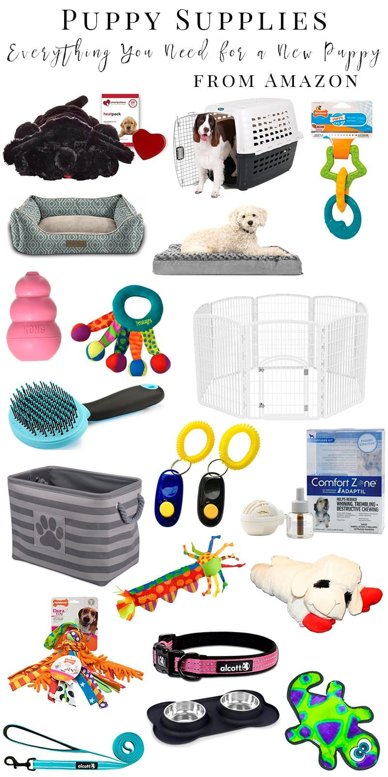 Puppy Supplies: What You Need for a New Puppy Before They Arrive