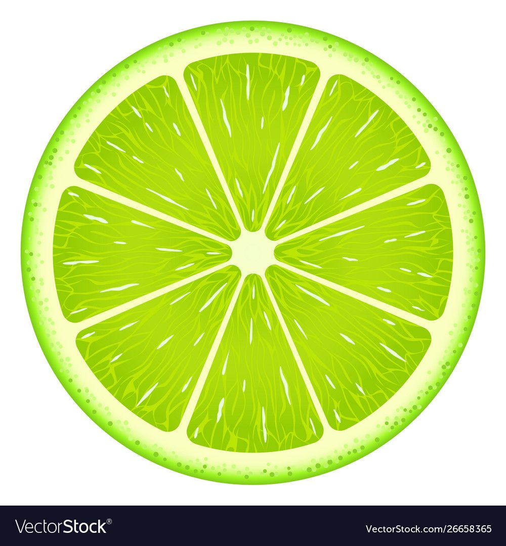 Lime Slice Isolated On White Background Fresh Fruit Download A Free Preview Or High Quality Adobe Illustr Fruit Art Drawings Lemon Art Vegetable Illustration