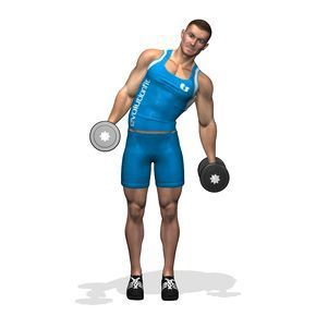The exercise involves the side muscles of the torso (the oblique muscle and the transversus abdominis).