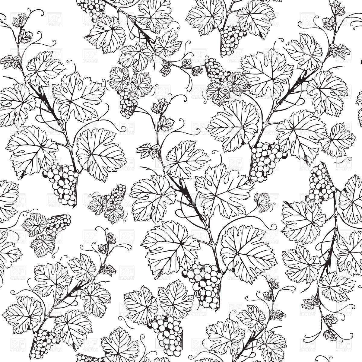 Grape Patterns | Grape vine sketch pattern, download royalty-free ... for Drawing Grape Vines  557ylc