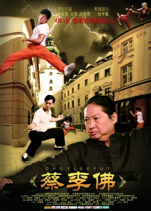 The 25 best kung fu movies
