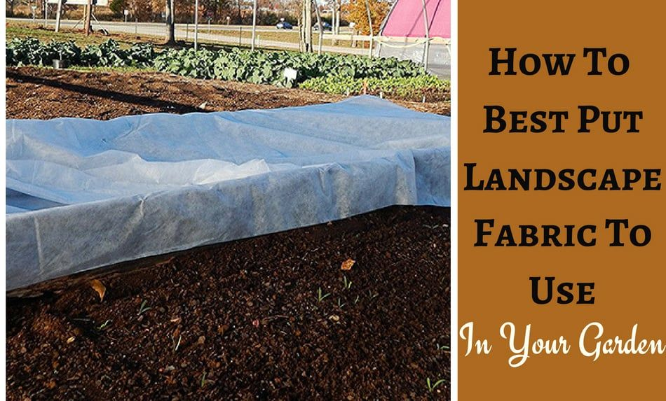 Quick And Easy Steps To Using Landscape Fabric In Your Garden