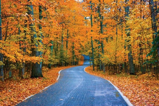 12 of Michigan's most dazzling fall color drives
