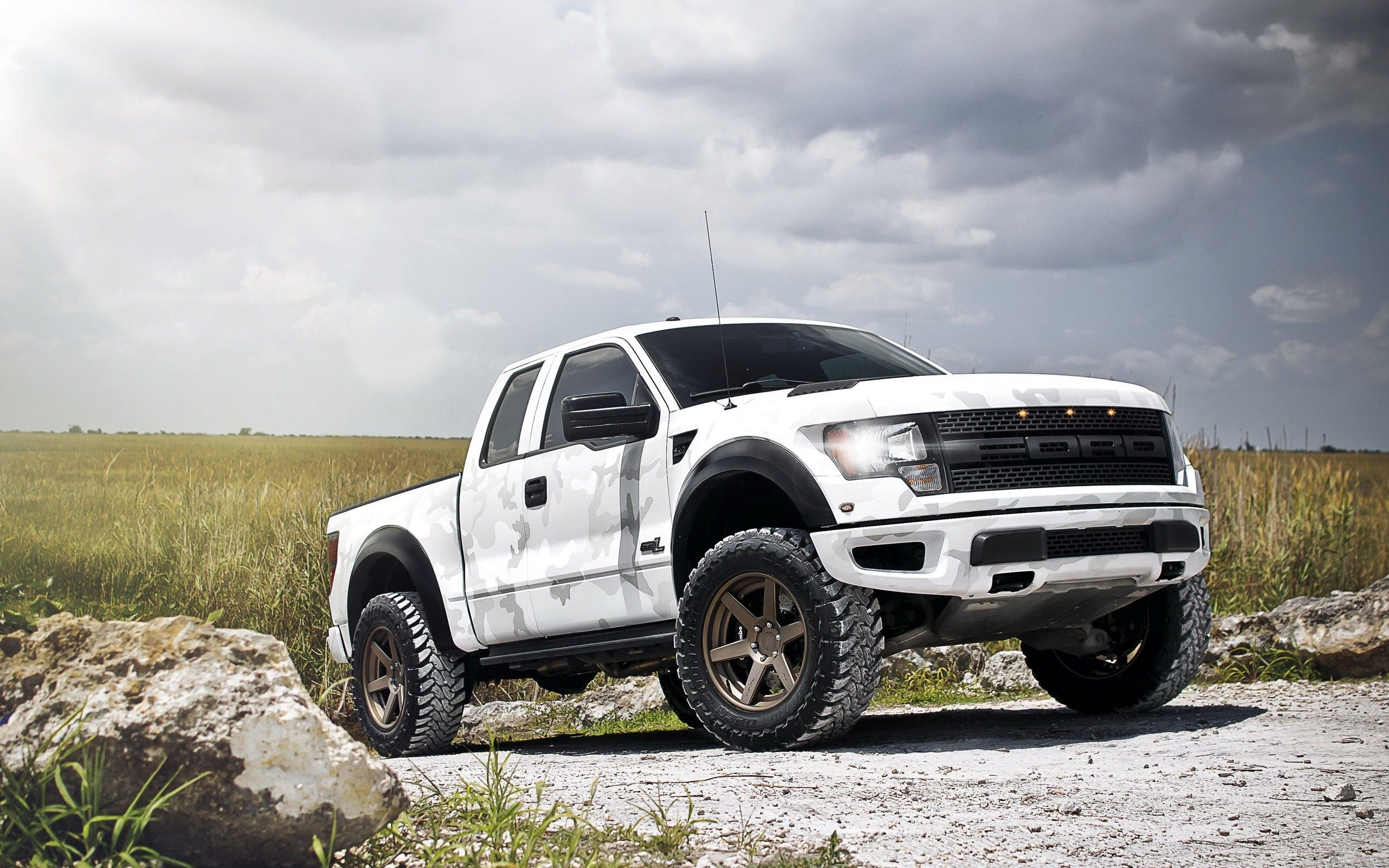 Ford spent a great deal of time and r d dollars transforming the into the raptor even going so far as to construct a durability loop in the desert of