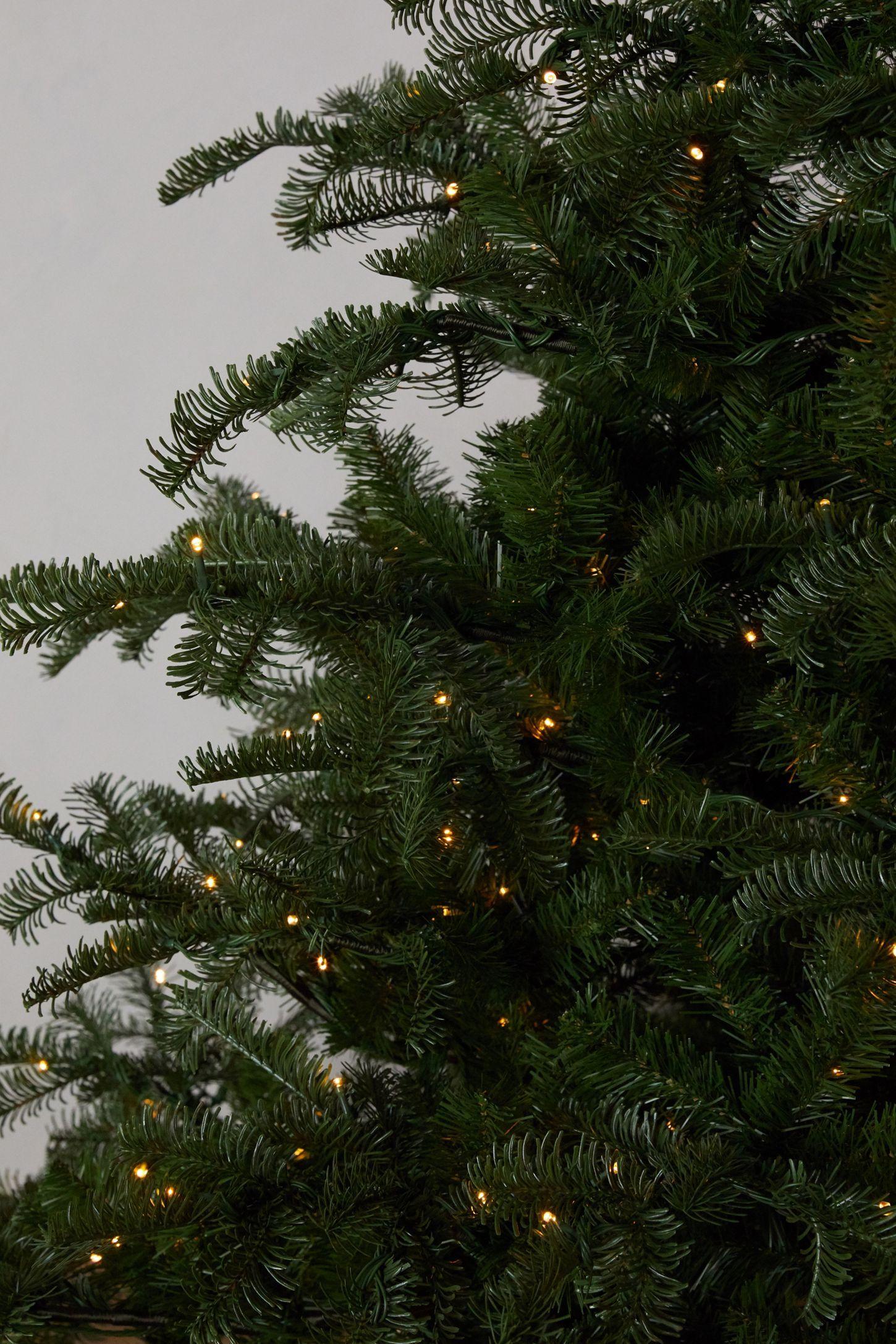Faux Pre-lit LED Nordmann Fir Tree | Nordmann fir tree