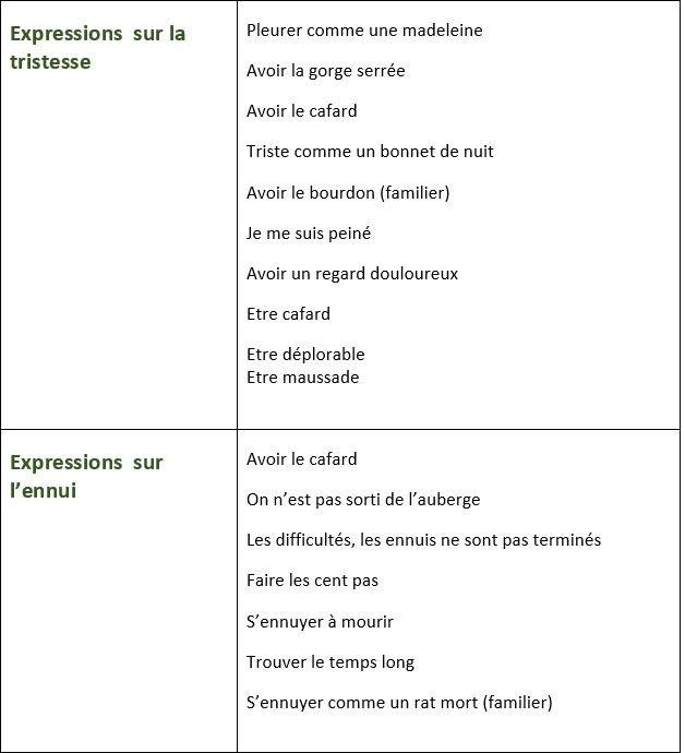 Populaire Liste d'expressions pour exprimer la joie, la peur, la tristesse  XY44