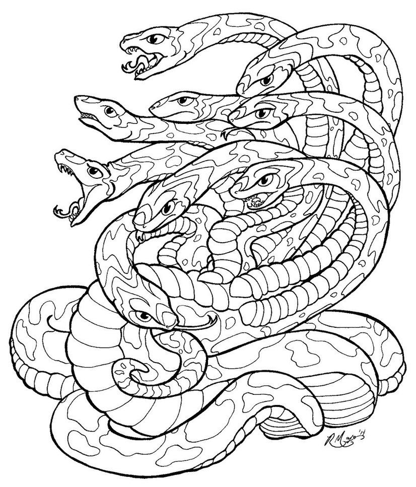 Hydra lineart JPG by rachaelm5 | Клипард змеи | Pinterest | Bilder