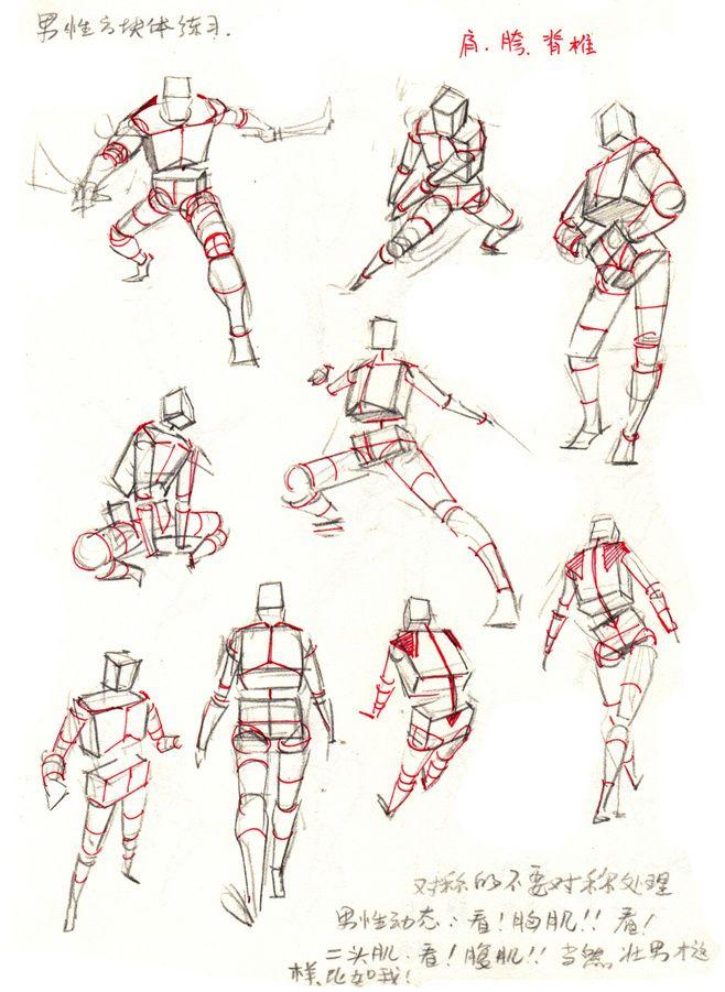 Pin By Nur On Mangadrawing Tutorial Pinterest Anatomy Pose And