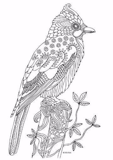animales que vuelan para colorear a lapiz | dibujos | Pinterest ...