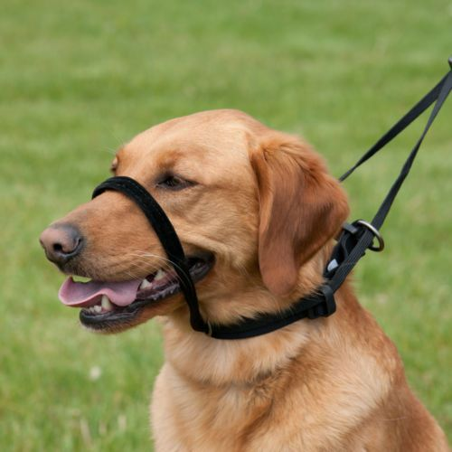 Details About Control Dog Harness Large S M L Xl 2xl Stop Pulling