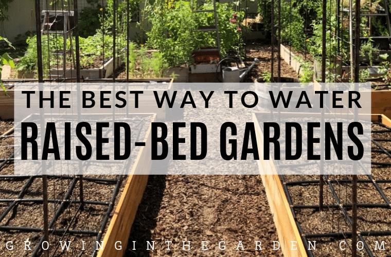 Best Way To Water Raised Bed Gardens Raised Garden Beds 400 x 300