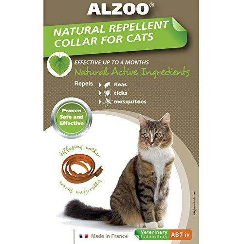 Robot Check Cat Collars Cat Fleas Cat Shampoo
