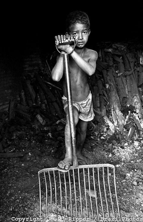 El trabajo infantil en la producción de carbón vegetal,                        para procesar hierro para exportación, principalmente a la Comunidad Europea .                    Brasil.