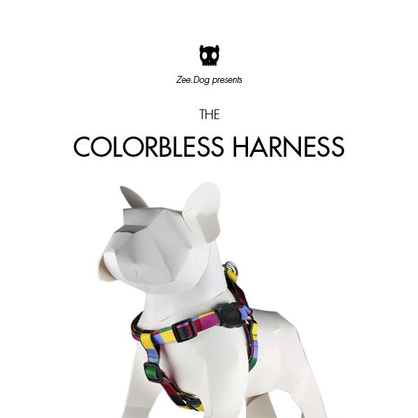 Zee Dog Colorbless Step In Harness Dog Presents Dogs Dog Life