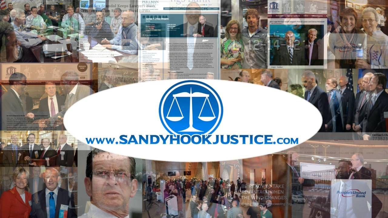 Sandy Hook Justice Report by Wolfgang Halbig - August 3, 2016 - Episode 14