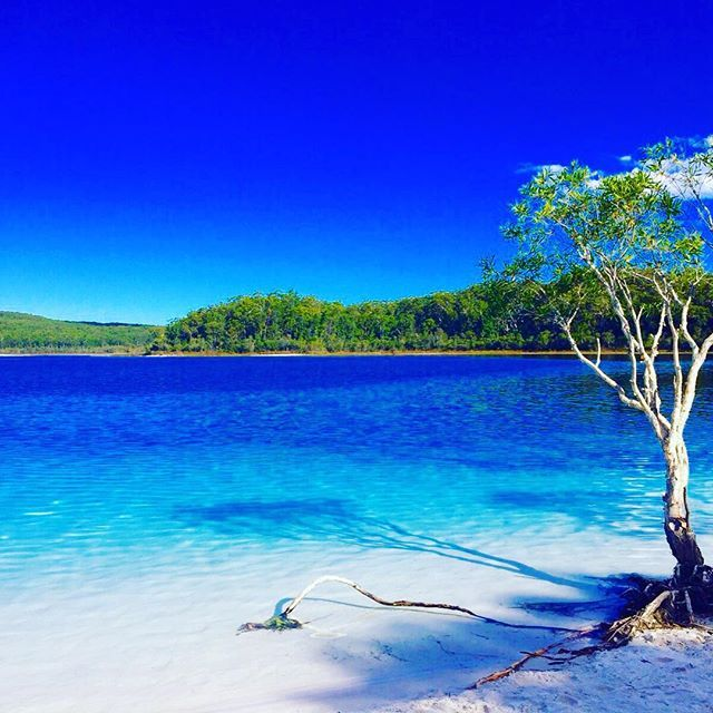 Fraser Island Australia: Why You HAVE To See Fraser Island Before You Die