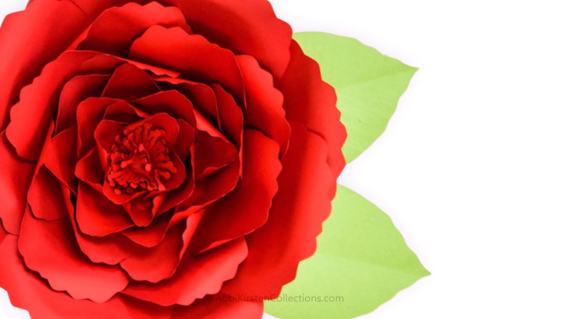 Free Giant Poppy Paper Flower Template