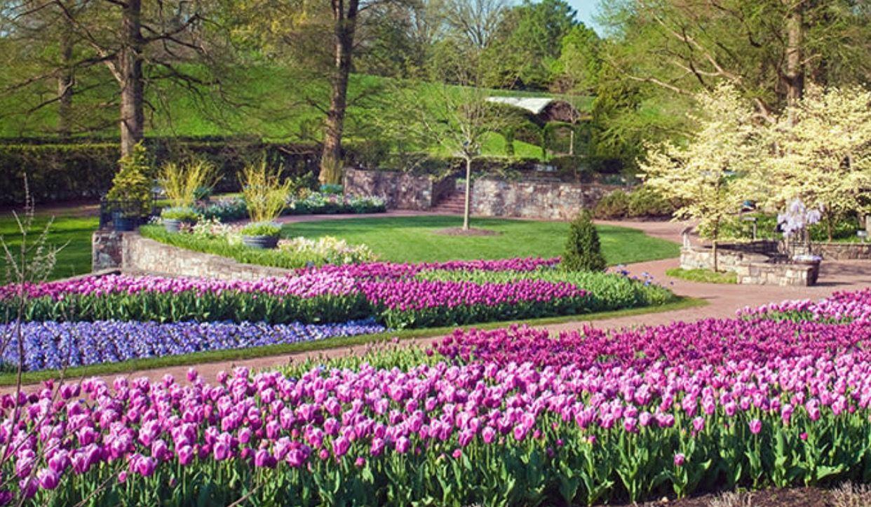 b46429bf40f0c99d750121d9e6d908a0 - Places To Eat Around Longwood Gardens