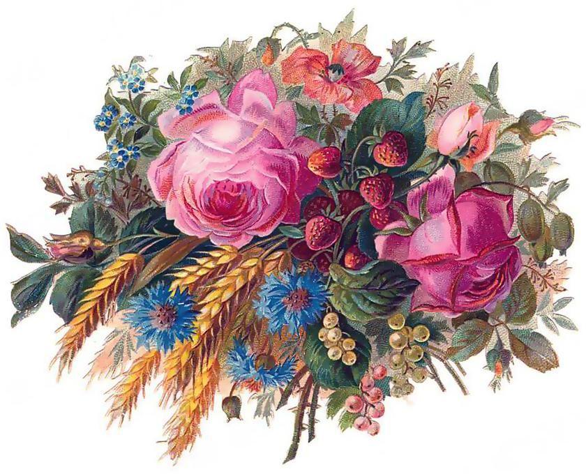 Старые открытки цветов, днем