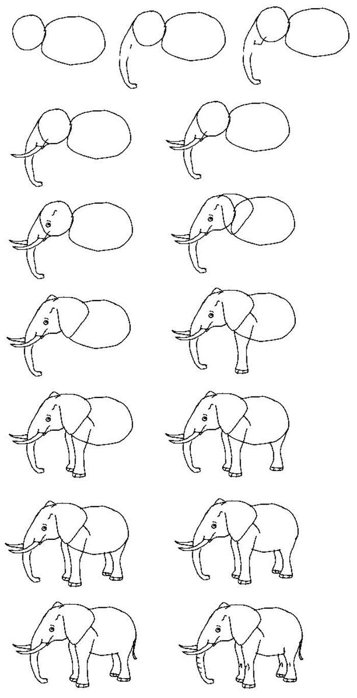 Dibujos De Lineas Simples De Animales Al Estilo De Los Dibujos Animados Y El Comic Ejemplos Para Pr Dibujos Sencillos Dibujos De Elefantes Dibujo Paso A Paso