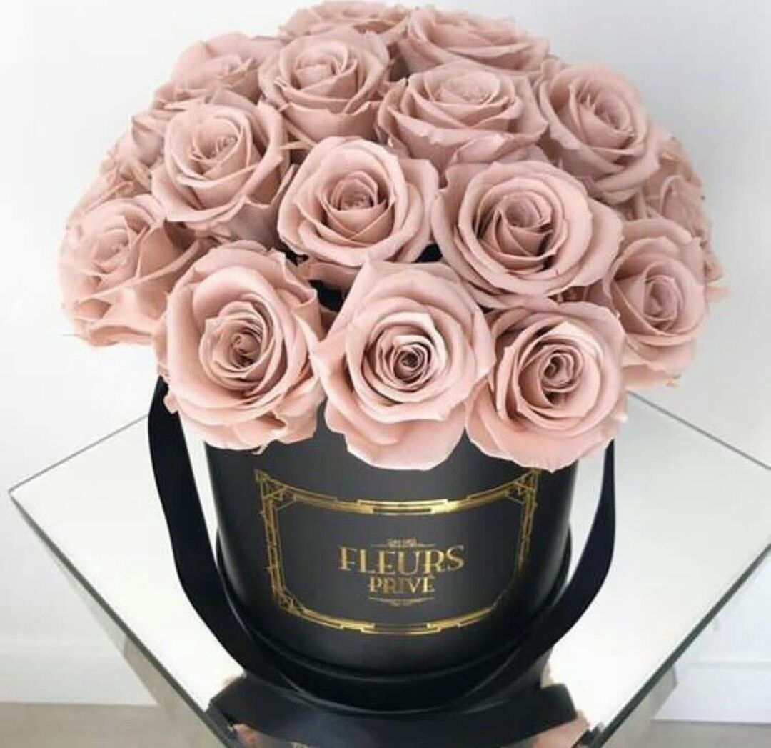 الح ب الأول Luxury Flowers Rose Beautiful Flowers