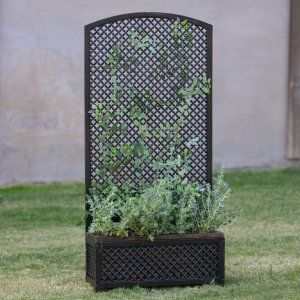 Thornbury Ornamental Metal Garden Window Trellis Add a touch of