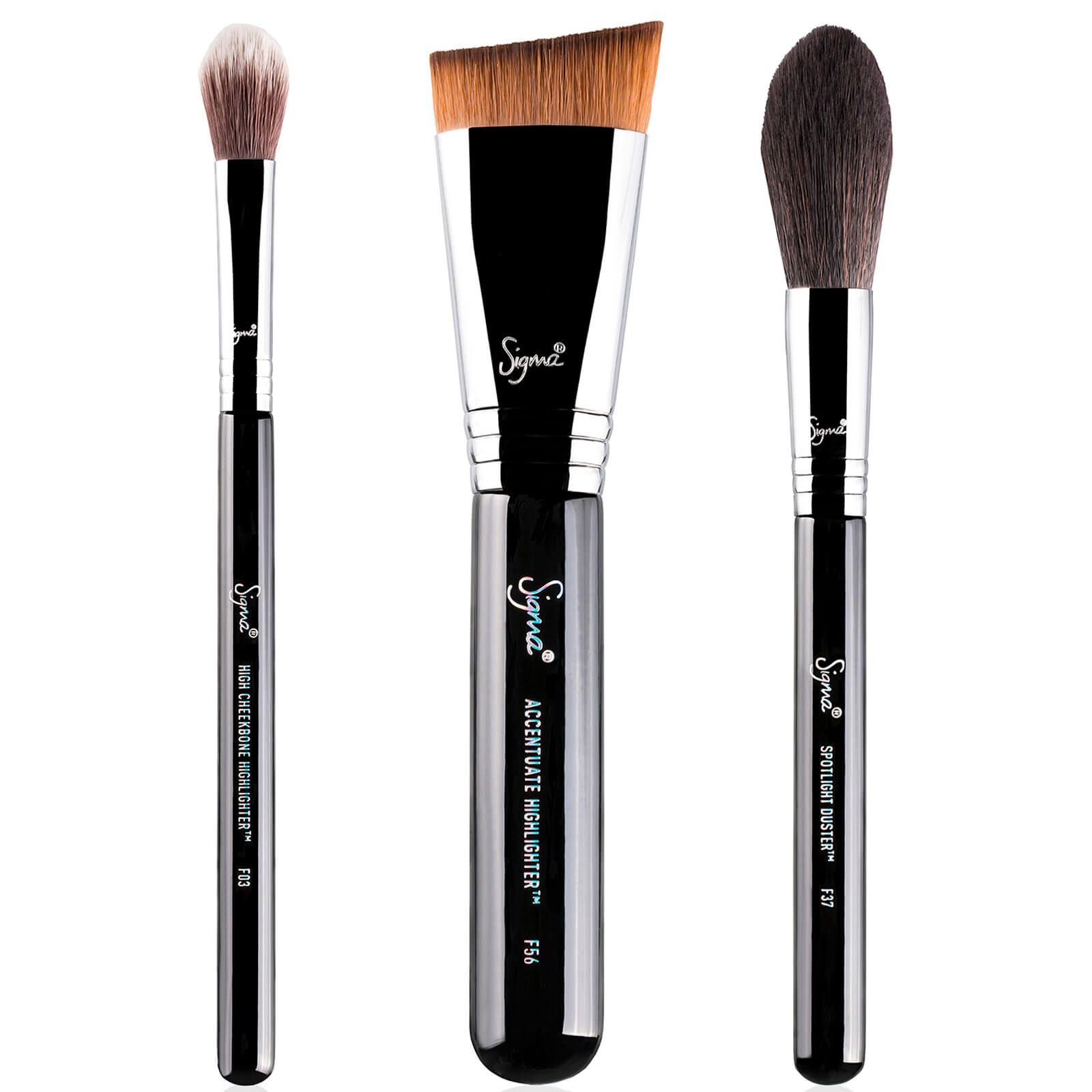 Sigma Highlight Expert Brush Set (Worth 68) Makeup