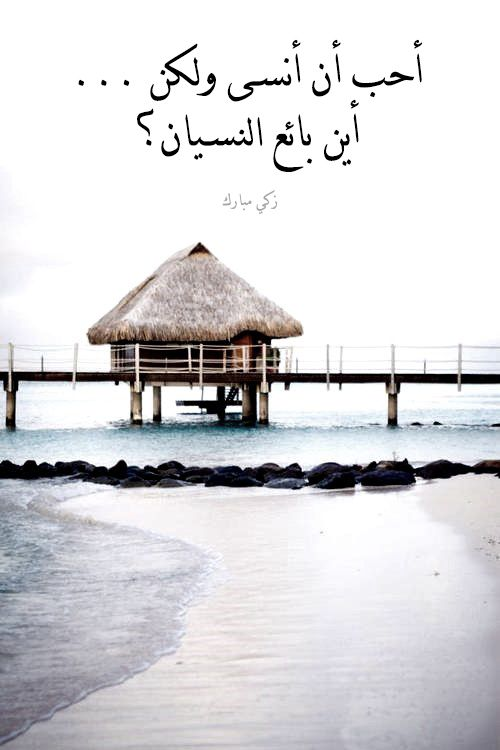 Careworn Arabian Spirit Quotes Words Can Hurt Words Quotes