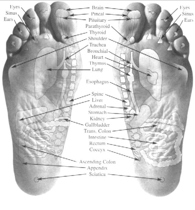 Foot Diagram Apply Essential Oils Car Wiring Diagrams Explained
