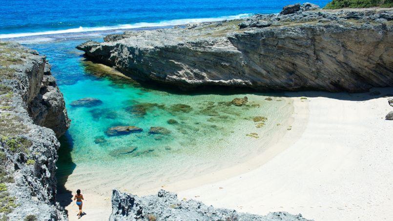 Protégée entre deux falaises, authentique et tranquille, la plage Anse de Rodrigues est un des lieux de ponte favoris des tortues marines.