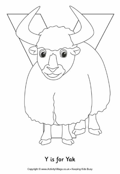 Y Is For Yak Colouring Page Abc Coloring Pages Coloring Pages Abc Coloring