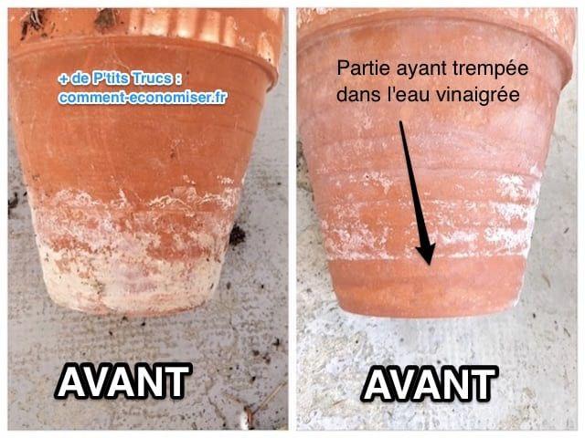 Traces Blanches Sur Les Pots De Fleurs Comment Les Eliminer Avec Du Vinaigre Blanc Pots De Fleurs En Terre Cuite Pots Et Diy Pot De Fleur