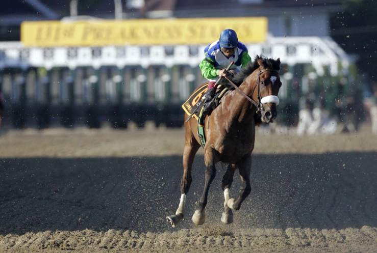 Barbaro died 10 years ago today. What's Horses