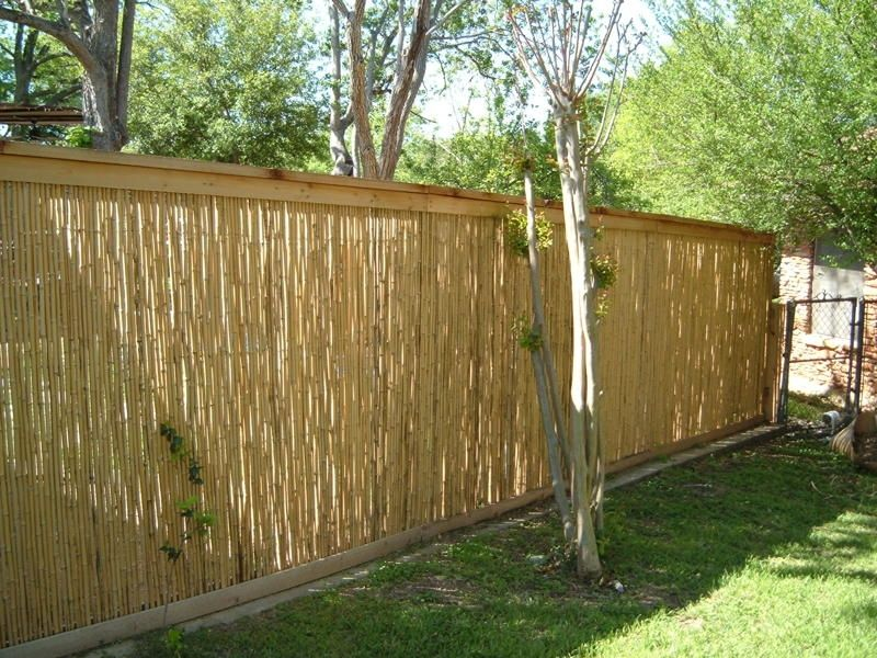 Creative Design Of Fences Of Various Colors And Materials Of Choice So Can Give The Impression Of Beauti Diy Privacy Fence Cheap Privacy Fence Backyard Fences