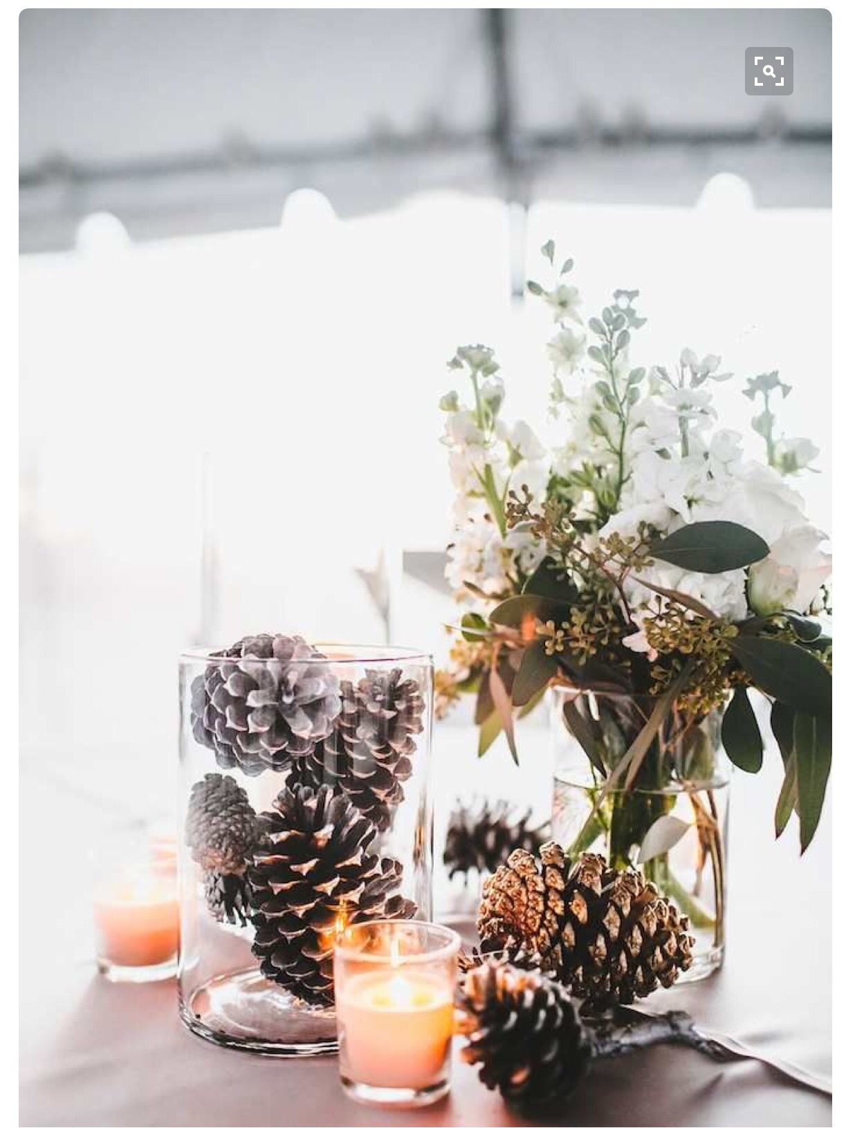 Wedding decorations and ideas december 2018 Pin by Mandi Charles on Wedding Dreams  Pinterest  Winter weddings