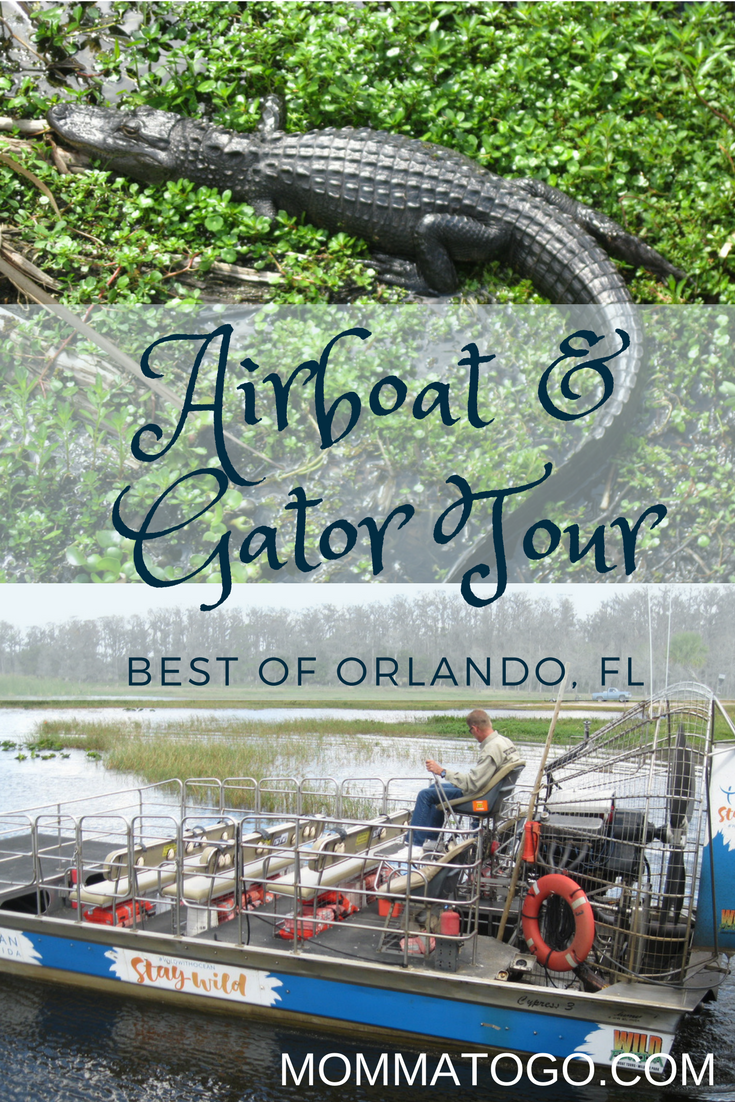 Everglades Airboat Tour with Wild Florida