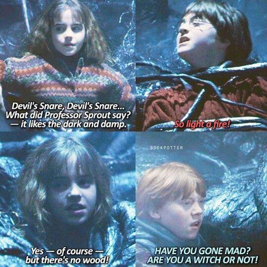 Pin By Farishta Ally On Harry Potter Harry Potter Universal Harry Potter Obsession Harry Potter Memes