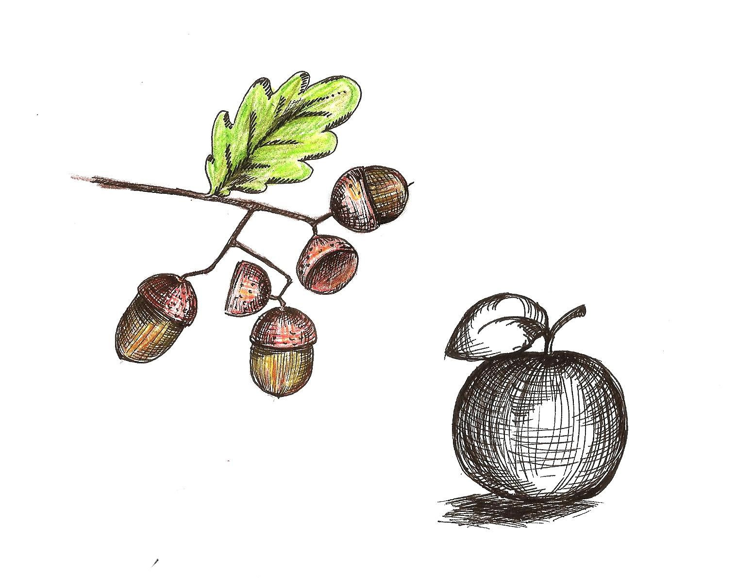 More from student Evelina S. in my class Improve Your Ink Drawing with Hatching Techniques http://skl.sh/2aHIvmN