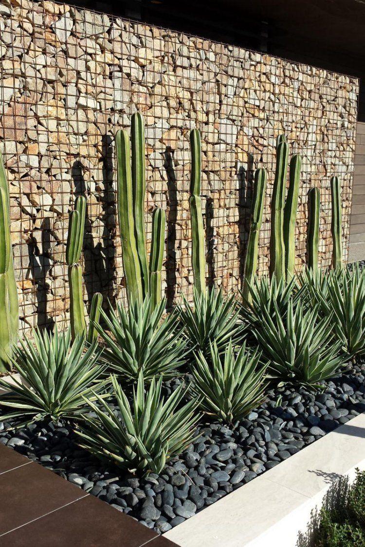 Mur Gabion Dans Le Jardin Moderne  Un Joli élément Fonctionnel