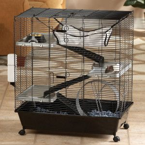 All Living Things Luxury Rat Pet Home Petsmart Pet Rat Cages Rat Cage Small Pets